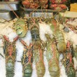 Lobsters in market — Stock Photo