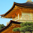 Close up Kinkakuji Temple roof and gold bird on top, Japan — Stock Photo