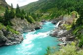 Kawarau river and forest ,Queenstown, New Zealand — Stock Photo