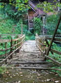 Old wood walkway in forest — Stock Photo