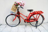 Flower on a bicycle — Stock Photo