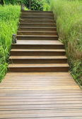 Wood stair way on green garden — Stock Photo