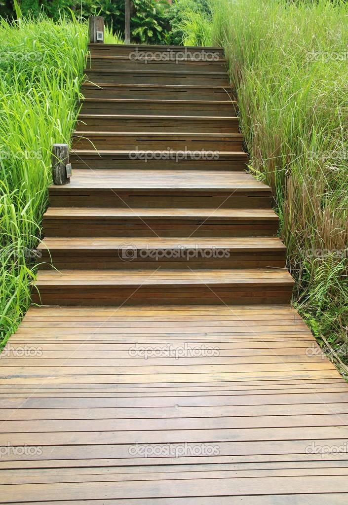 escada jardim madeira:Forma escada de madeira no jardim verde — Fotografias de Stock