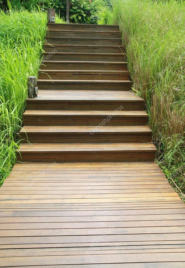 escada de pedra no jardim:forma escada de madeira no jardim verde — Foto Stock © aodaodaodaod