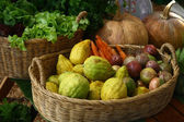 Fruits and vegetables in basket — Stock Photo
