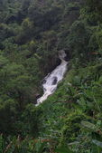 Water fall in forest, Chiang Mai, Thailand — Stock Photo