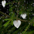 Christmas decoration hanging on christmas tree behind snowflakes — Stock Photo