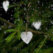 Christmas decoration hanging on christmas tree behind snowflakes — Stock Photo #34686867