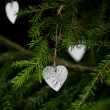 Christmas decoration hanging on christmas tree — Stock Photo