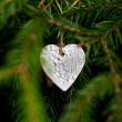 Christmas decoration hanging on christmas tree — Stock Photo #34687247