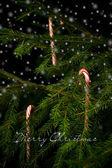 Candy hole na vánoční stromeček za sněhové vločky. — Stock fotografie