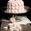 Scalloped pale pink cake on glass stand next to rose and marshma — Stock Photo