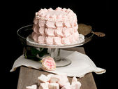 Scalloped pale pink cake on glass stand next to rose and marshma — Stockfoto