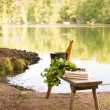 Finnish summer landscape and sauna objects on bench by lake. — Stock Photo #47752191