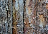 Old wooden fence with bark texture — Stock Photo