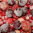 Stock Photo: Frozen fruit