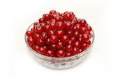 Fresh red currants in a glass bowl — Stock Photo