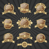 Conjunto de selo de qualidade premium — Vetorial Stock