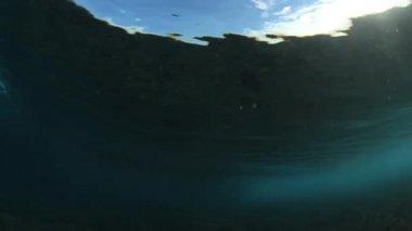 Underwater Ocean Wave Breaking With Sun — Stock Video
