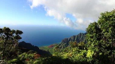 Kalalau Valley Lookout - Kauai, Hawaii — Stock Video