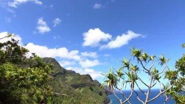 Na pali coast - kauai, havaj — Stock video