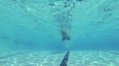Slow Motion Man Swimming Underwater In Pool — Stock Video