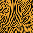 Zebra skin pattern — Stock Photo