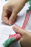 Cross-Stitch Embroidery — Stock Photo