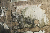 Dilapidated wall — Foto Stock