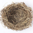 Empty bird nest — Stock Photo #43403135