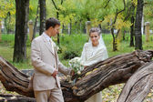 Happy young bride and groom stand neat to fallen old tree in aut — Stock Photo