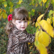 Happy little girl looks away next to yellow trees in park at aut — Stock Photo