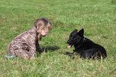Kleine Mädchen im Mantel Kniebeugen auf Gras mit schwarzer Hund im Herbst — Stockfoto