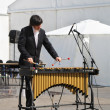 PERM - JUNE 10: Man plays xylophone at festival White Nights, on — Stock Photo #38447077