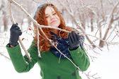 S'accroche à une branche avec baies — Photo