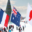 PERM, RUSSIA - JAN 6, 2014: Flags of participating countries (Fr — Stock Photo #42034107