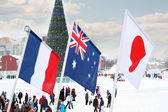 PERM, RUSSIA - JAN 6, 2014: Flags of participating countries (Fr — Stock Photo