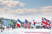 PERM, RUSSIA - JAN 6, 2014: Flags of participating countries of  — Stock Photo