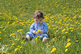 Baby with pacifier holds flowers and sits on green meadow with y — Stock Photo