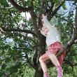 Happy little cute girl sits on tree branch in park at summer day — Stock Photo #49874759
