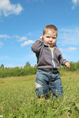 Little handsome boy stands at green meadow and thinks in sunny d — Stock Photo