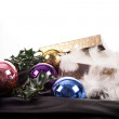 Christmas decorations — Stock Photo #36580007