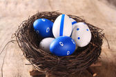 Easter colored eggs in nest — Stock Photo