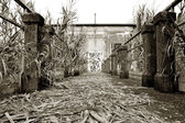 Abandonment — Stock Photo