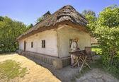 Pirogovo の村の家で gusli プレーヤー — ストック写真