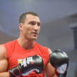 ������, ������: Ukrainian boxer Vitali Klitschko open training session before the fight with the Russian boxer Povetkin