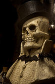 Skull in a hat — Stock Photo