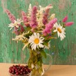 Still life bouquet of chamomiles and astilbe with gooseberries — Stock Photo
