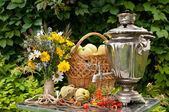 Natura morta con samovar e mele — Foto Stock