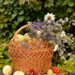 Basket of white transparent apples with wild flowers bouquet — Stock Photo